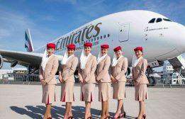 تعرف على أفراد طاقم الطائرة: كم عددهم وما هي وظيفتهم